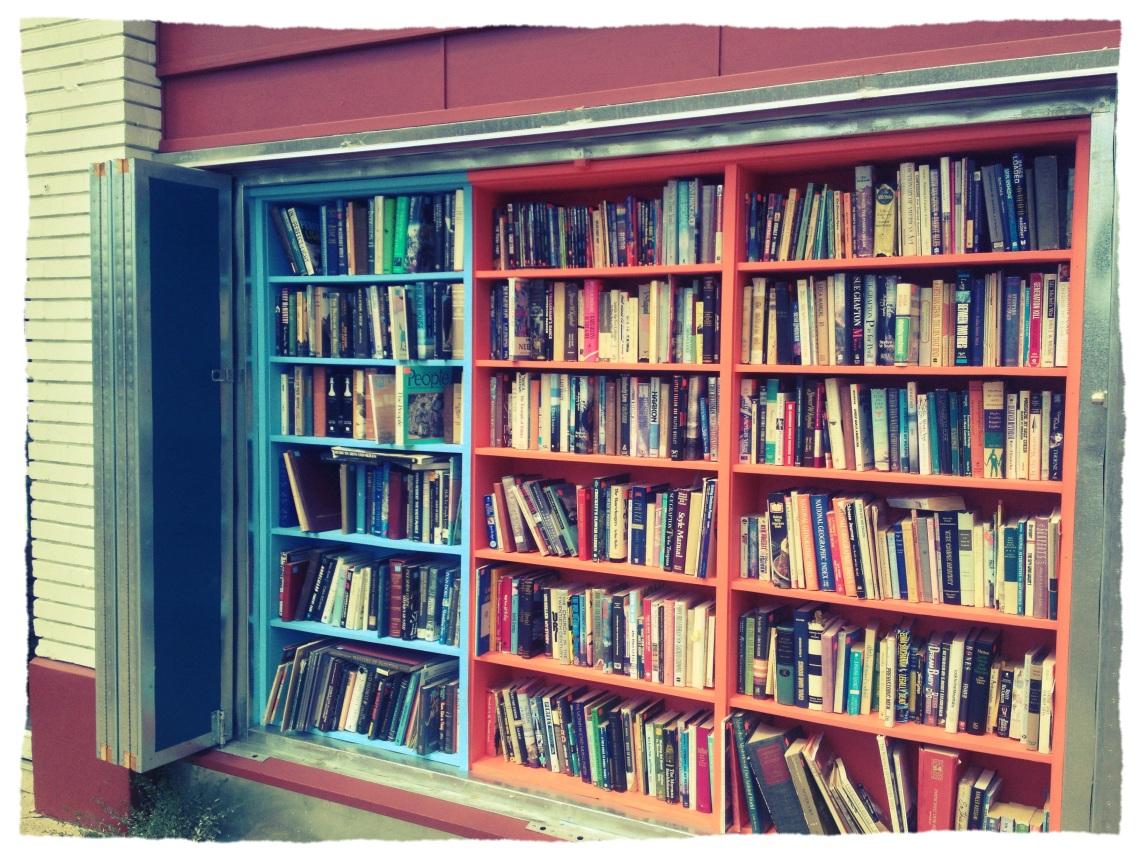 Colección de libros con vistas al exterior. (Foto: flickr.com / Ryan Tronier)
